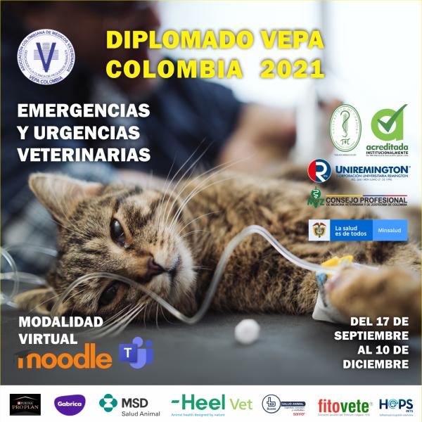Poster corel diplomado vepa colombia